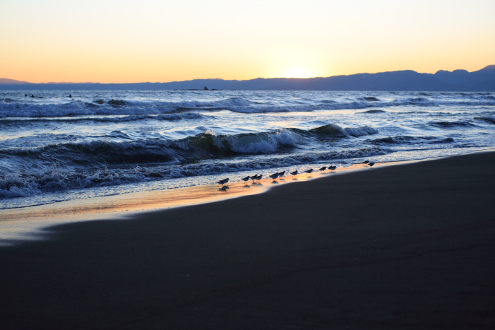 Quiet beach scene_e0061613_012540.jpg