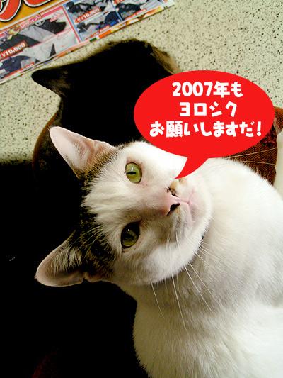 2006年ありがとうございまいた!_a0028451_1943217.jpg