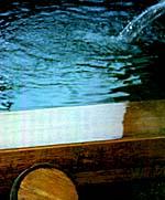 庭先小旅行 (行ってきました篭坊温泉とぼたん鍋) その2_d0083265_15592694.jpg