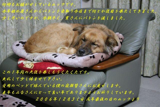 b0074469_923832.jpg
