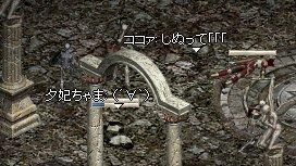 c0050383_15111217.jpg