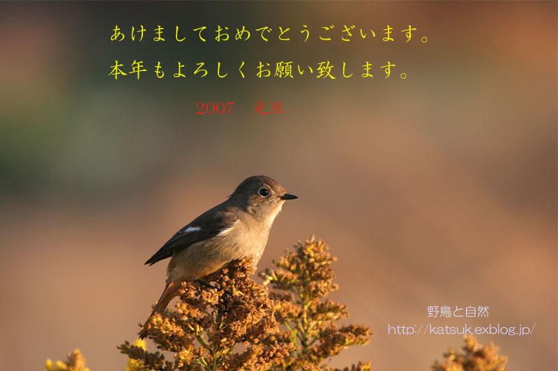 f0095702_044243.jpg