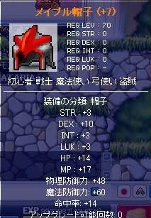 d0048007_18281099.jpg