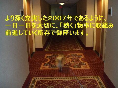 b0089508_15571784.jpg