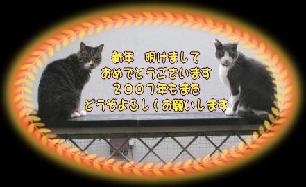 b0018017_16301381.jpg