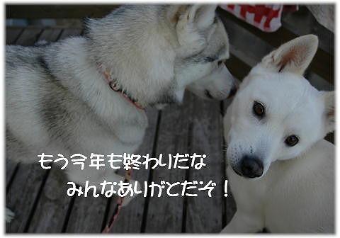 a0047325_1435859.jpg