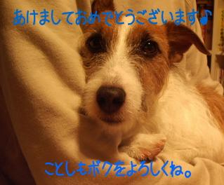c0030328_0494678.jpg