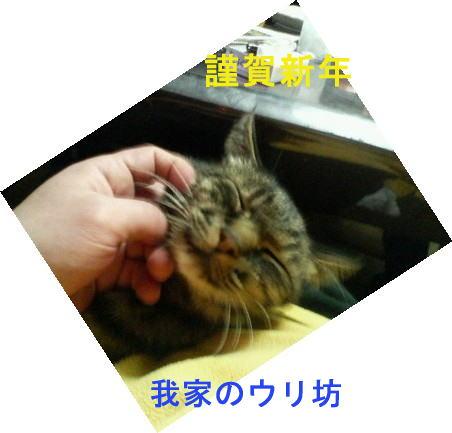 c0034029_1345037.jpg