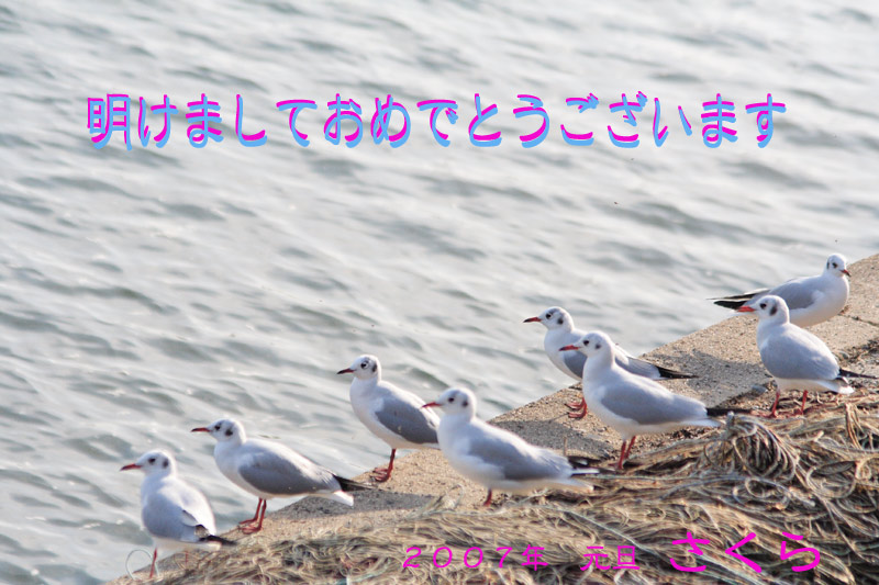 e0025930_23233049.jpg