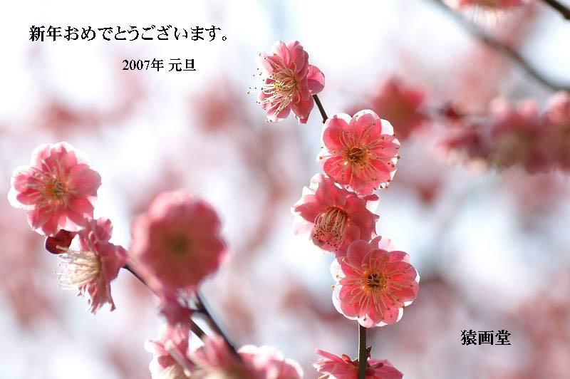 f0105459_13251819.jpg