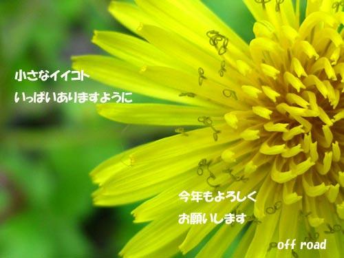 a0013879_12271.jpg