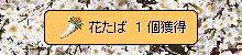 f0123883_20251636.jpg