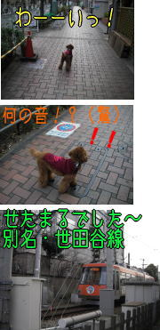 b0063399_1649183.jpg