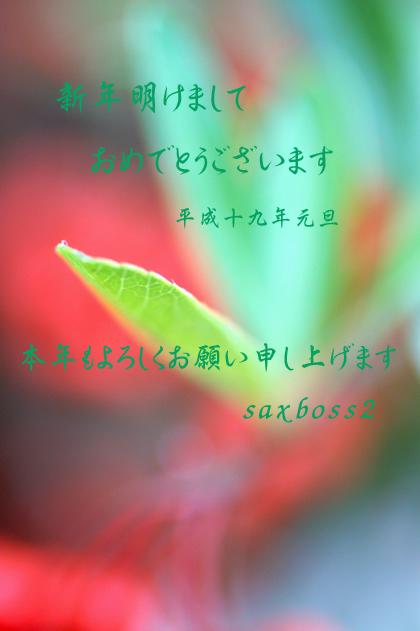 b0032001_1942292.jpg