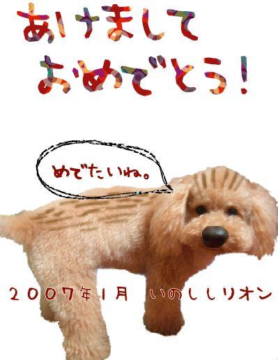 f0005120_10493839.jpg