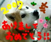 d0011940_1393811.jpg