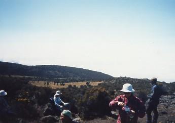 キリマンジャロ登頂記 (4) ホロンボ・ハット(3720m)へ_c0011649_11374928.jpg