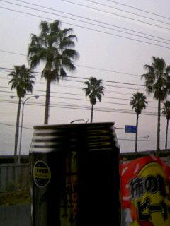 天気はイマイチだけど…_b0016474_12352352.jpg