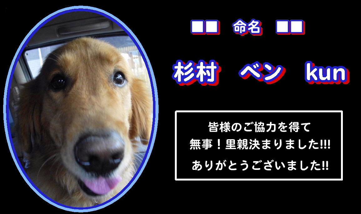 b0072501_16183143.jpg
