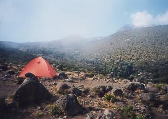 キリマンジャロ登頂記 (5) ホロンボ・ハット(3720m)到着_c0011649_23415039.jpg