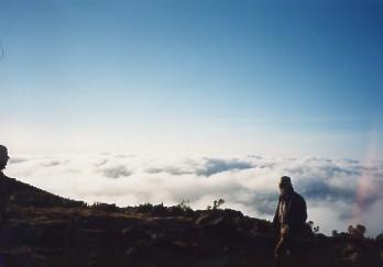 キリマンジャロ登頂記 (5) ホロンボ・ハット(3720m)到着_c0011649_2342452.jpg