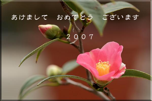 d0032553_1812465.jpg