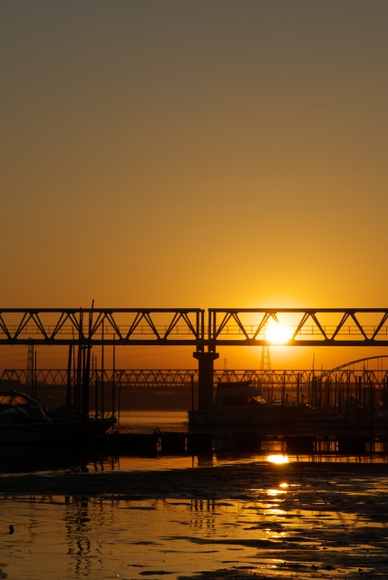 河口の朝・3_f0018464_7204241.jpg