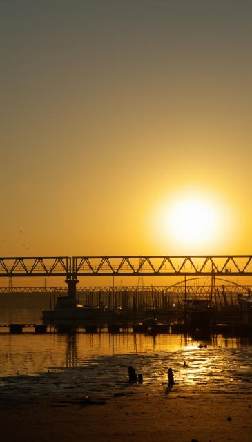 河口の朝・3_f0018464_7213717.jpg