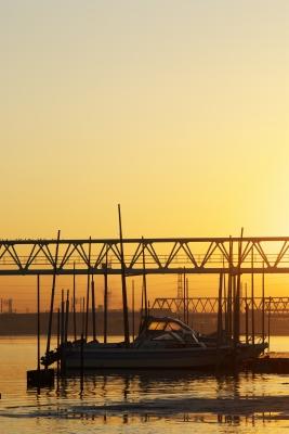 河口の朝・3_f0018464_721455.jpg