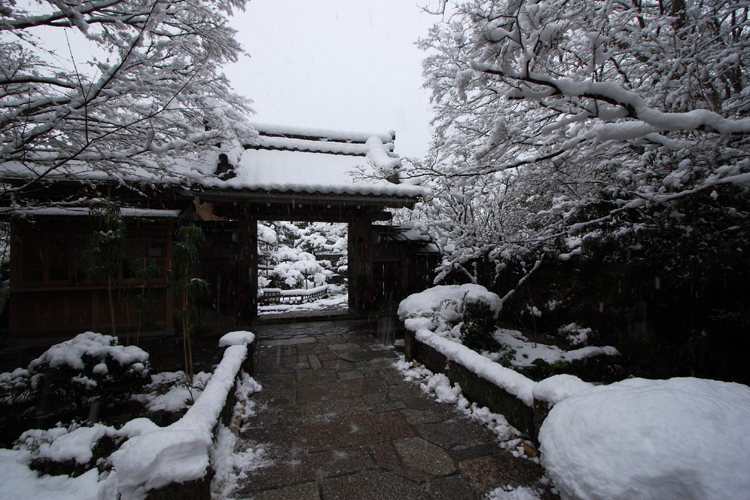 雪化粧の宝泉院_e0051888_19141171.jpg
