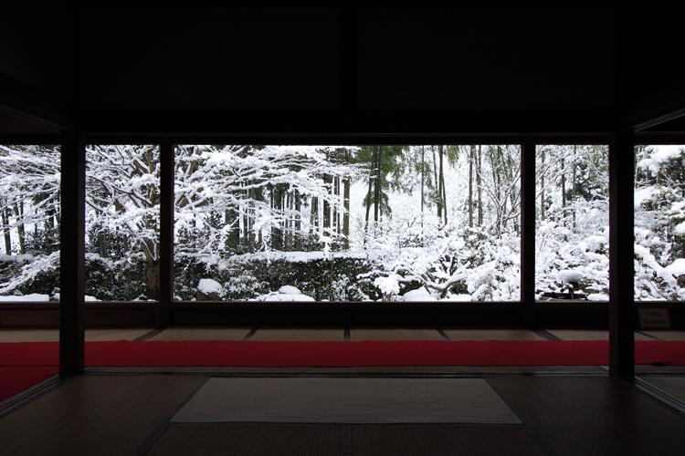 雪化粧の宝泉院_e0051888_19145849.jpg