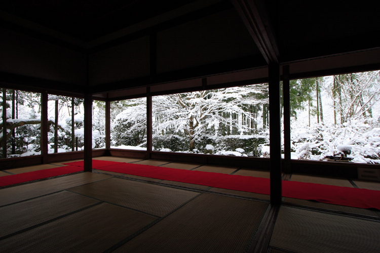雪化粧の宝泉院_e0051888_19152291.jpg