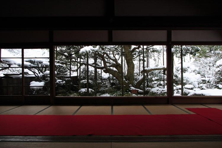 雪化粧の宝泉院_e0051888_19154950.jpg