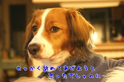 d0013149_0385058.jpg