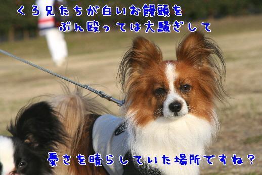 d0013149_22442271.jpg