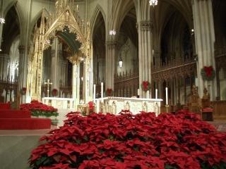 教会のクリスマス_b0031055_20502847.jpg