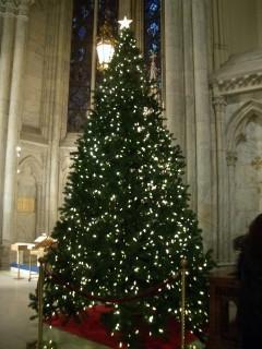 教会のクリスマス_b0031055_20555124.jpg