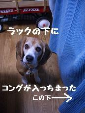 b0098660_2328057.jpg