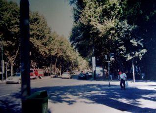リスボンの町_a0079995_744474.jpg