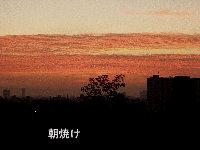 f0116707_14161838.jpg