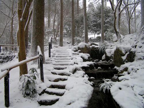 三千院 雪景色_e0048413_17525592.jpg