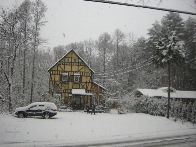 雪化粧_f0111415_20484168.jpg