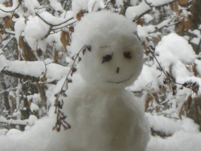 雪化粧_f0111415_20495942.jpg