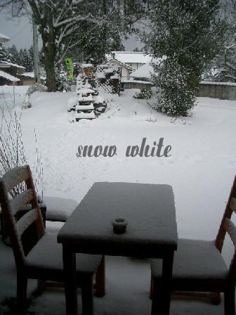 積雪_b0094378_18475189.jpg