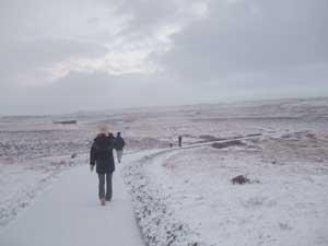 アイスランド・ゴールデンサークルツアーレポート_e0030586_5141763.jpg