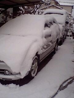 雪が・・・・_a0065393_8572312.jpg