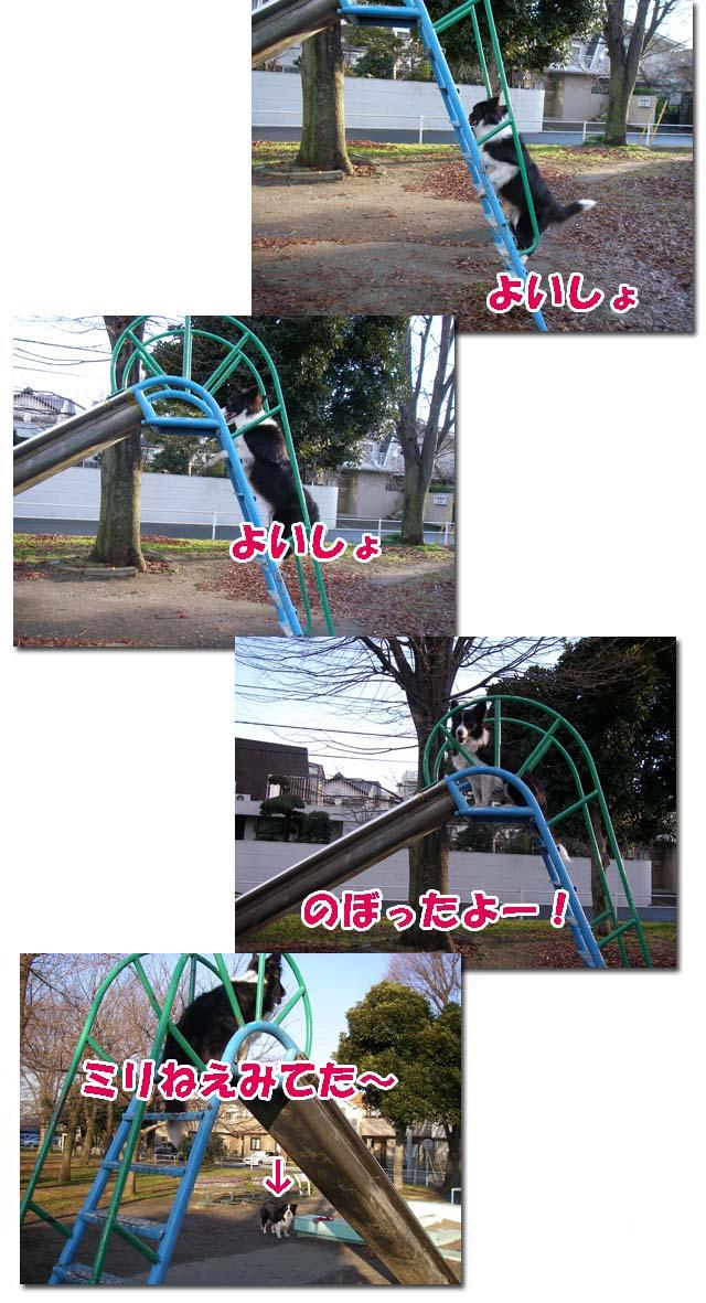 f0114893_2334964.jpg