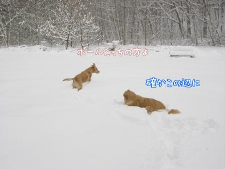 f0064906_1813348.jpg