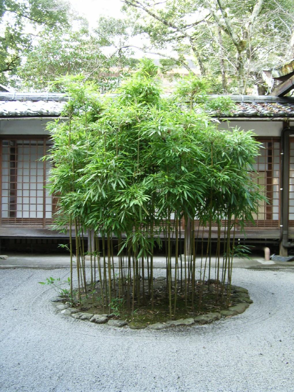 上賀茂神社 1日目 その2_d0091021_1203541.jpg