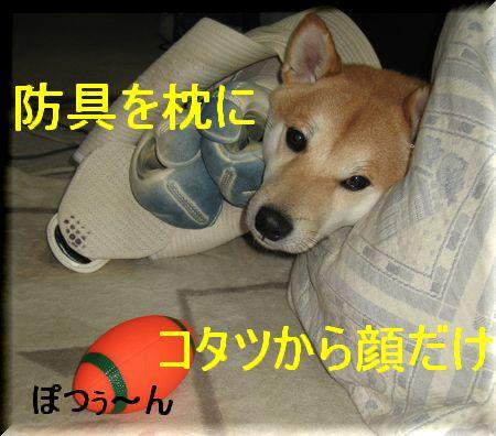 e0085147_15710.jpg